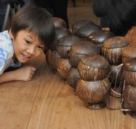 garcimo cocosphere